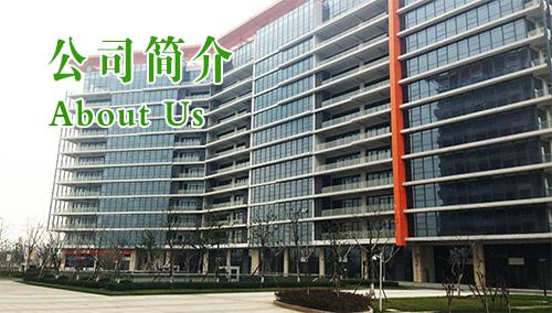 中国金螺号儿童教育中心